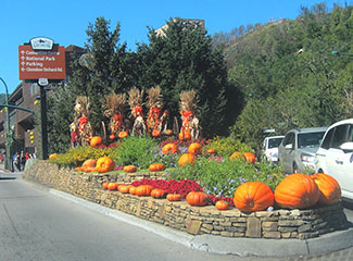smoky mountain harvest festival